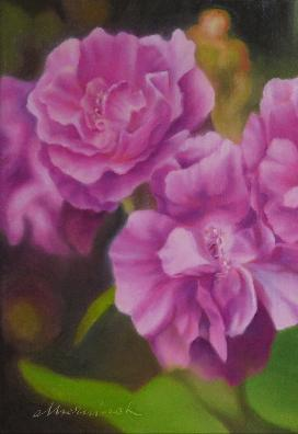 Purple roses / 25 x 25 / Öl / 250,00€